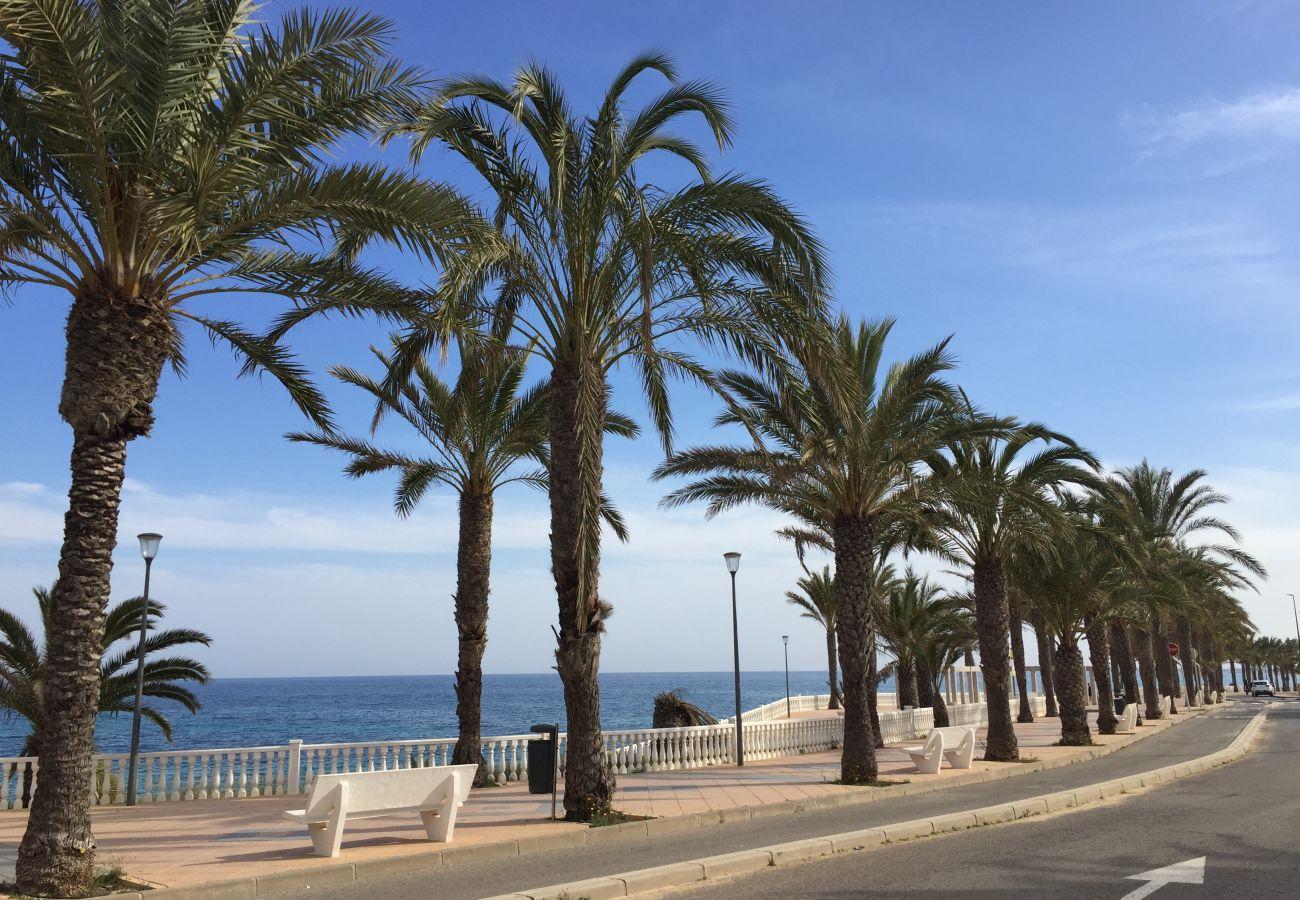 Ferienwohnung in Torre de la Horadada - 3027 Vista Azul,close to the beach &  heated pool