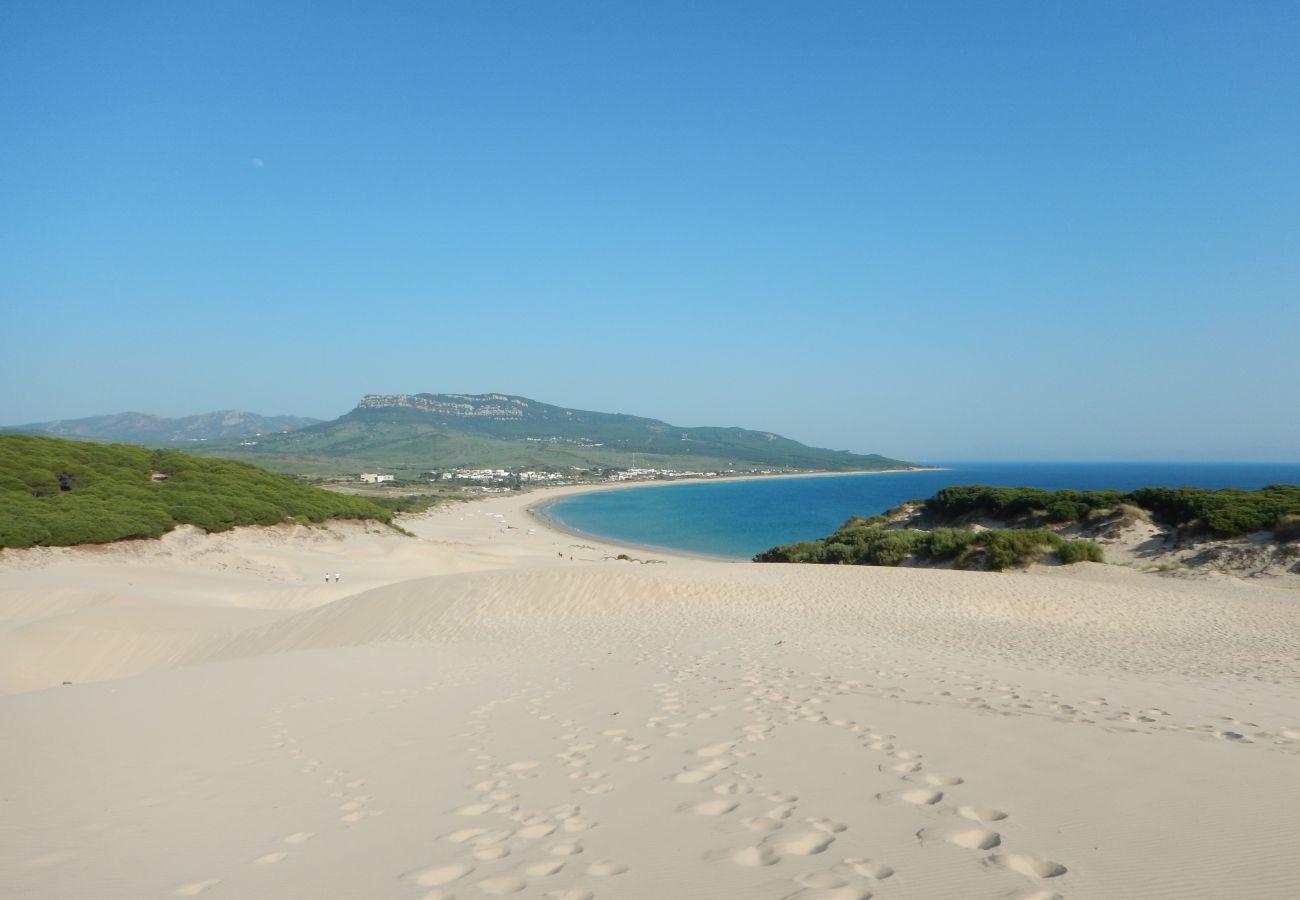 Ferienwohnung in Manilva - Viñedos del Mar 2303